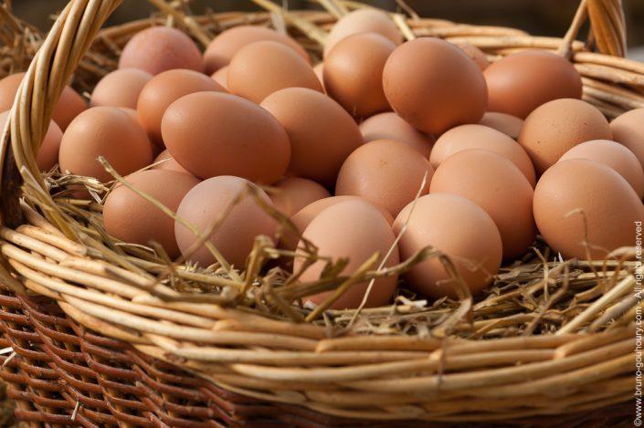 Photographe produit agricole production agricole aviculture Bruno Gouhoury