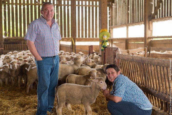 Photographe portrait éleveurs agriculteurs ovins Bruno Gouhoury