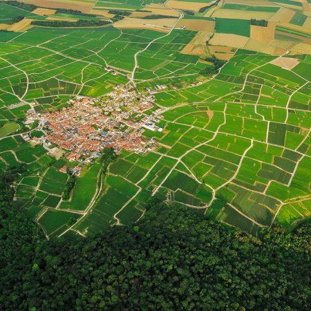 photographe-aerien-agriculture-viticulture-vignoble