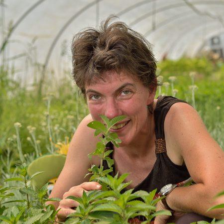 photographe-agriculture-portrait-maraicher